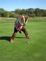 Badger Golfer